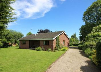 Thumbnail 3 bed detached bungalow for sale in Allsopp Close, Newnham