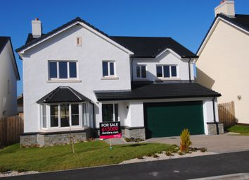 Thumbnail 5 bedroom detached house for sale in Lhoan Pibbin Vane, Reayrt Ny Cronk, Peel, Isle Of Man