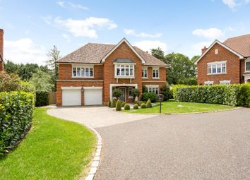 Thumbnail 6 bed detached house to rent in Tilford Road, Farnham, Surrey