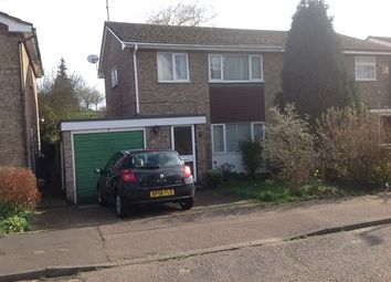 Thumbnail 4 bed semi-detached house to rent in St Davids Close, Colchester