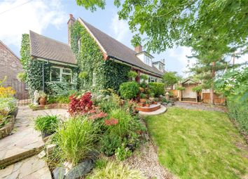 Thumbnail Semi-detached house for sale in Barrack Lane, Great Waltham, Chelmsford