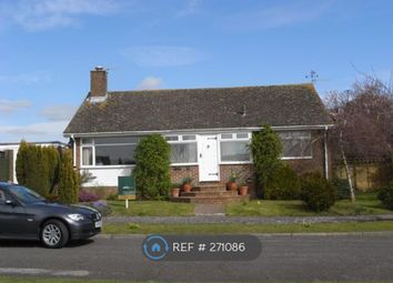 Thumbnail 2 bed bungalow to rent in Downview Road, Findon