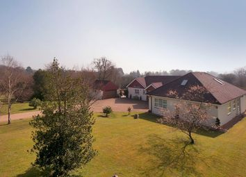 Thumbnail 7 bed detached bungalow for sale in Marley Road, Harrietsham, Maidstone