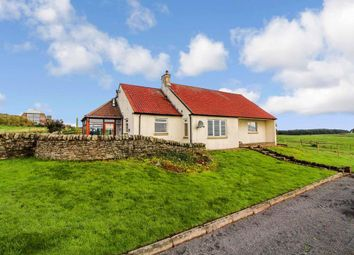 Thumbnail 3 bed semi-detached bungalow to rent in Kennoway, Leven