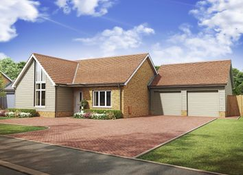 Thumbnail 2 bedroom detached bungalow for sale in Cockreed Lane, New Romney, Kent