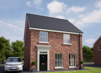 Thumbnail 3 bed detached house for sale in 57, Lady Wallace Square, Lisburn