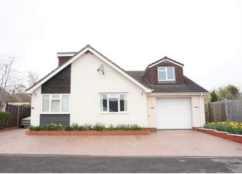 Thumbnail 5 bed detached bungalow for sale in Dillons Road, Taunton