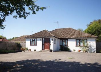 Thumbnail 3 bed detached bungalow for sale in Liphook Road, Lindford