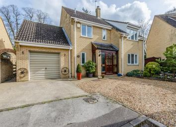 Thumbnail 4 bed detached house for sale in Stapleford, Cambridge, Cambridgeshire