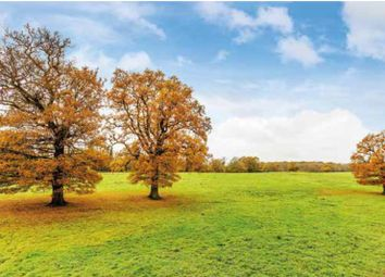 Thumbnail Land for sale in Paddock 5, Norbryght, Tilburstow Hill Road, South Godstone, Godstone, Surrey