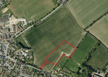 Thumbnail Industrial for sale in Yarmouth Road, Stalham, Norwich