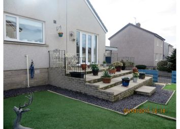 Thumbnail 2 bed link-detached house for sale in Drumsleet Avenue, Dumfries