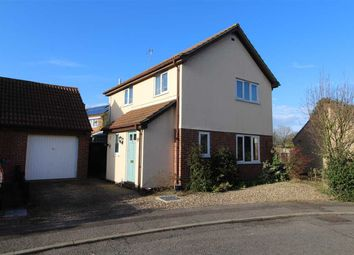 Thumbnail 3 bed detached house for sale in Fir Tree Close, Highwoods, Colchester