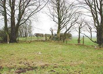 Thumbnail Land for sale in Oakbank Dsr, Oakwoodhill Farm, Canonbie DG140Ya