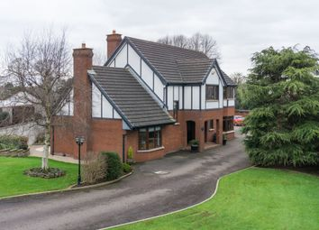 Thumbnail 5 bedroom detached house for sale in Old Coach Mews, Templepatrick