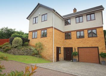 Thumbnail 4 bed detached house for sale in Carey Court, Saltash