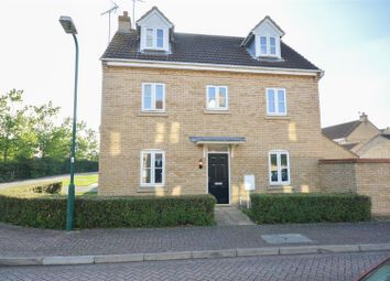 Thumbnail 4 bedroom link-detached house for sale in Humphrys Street, Peterborough