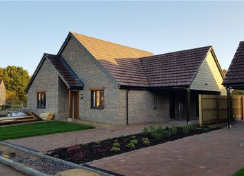 Thumbnail 3 bed detached bungalow for sale in Long Orhard Close, Martock, Somerset