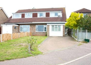 Thumbnail 5 bed semi-detached house to rent in Tangerine Close, Colchester