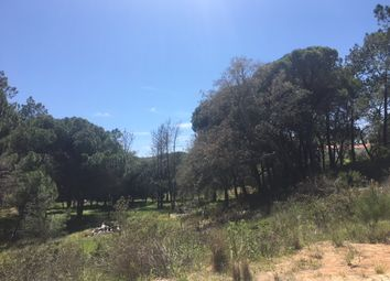 Thumbnail Land for sale in Vilas Alvas, Almancil, Loulé, Central Algarve, Portugal
