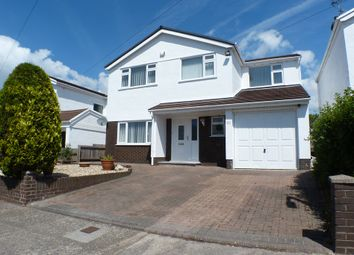 Thumbnail 4 bed detached house to rent in Summerland Lane, Newton, Swansea