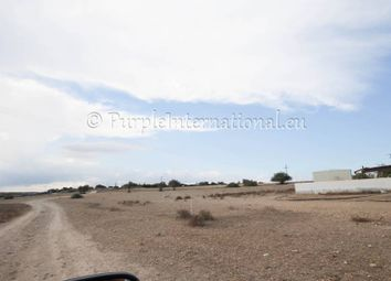 Thumbnail Land for sale in Vrysoules, Frenaros, Cyprus