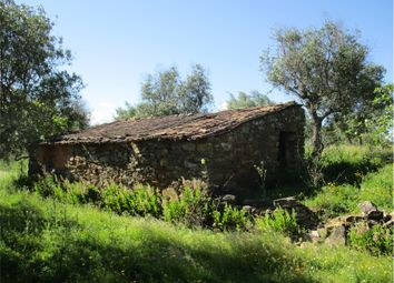 Thumbnail Farm for sale in Castelo Branco, Castelo Branco, Central Portugal