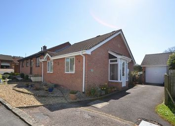 Thumbnail 2 bed semi-detached bungalow for sale in Yew Close, Honiton