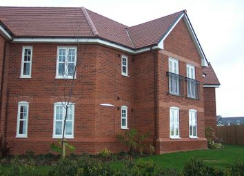 Thumbnail 2 bed flat to rent in Sherbourne Court, Weston, Crewe