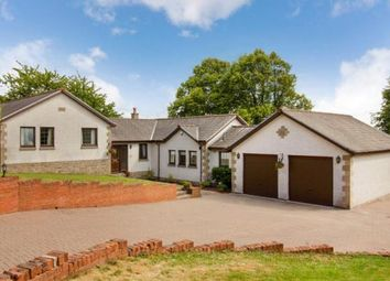 Thumbnail 4 bed bungalow for sale in Norwood Avenue, Alloa, Clackmannanshire