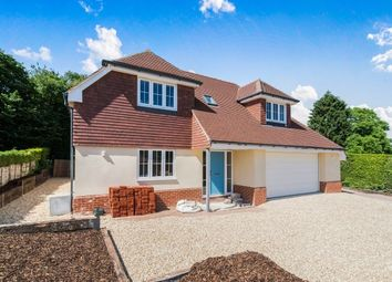 Thumbnail 4 bed detached house to rent in Woods Lane, Cliddesden, Basingstoke