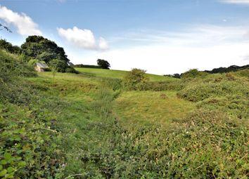 Thumbnail Property for sale in North Tawton, Okehampton, Devon