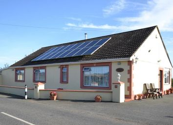 Thumbnail 3 bedroom detached bungalow for sale in Tiers Cross, Haverfordwest