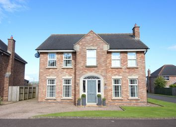 Thumbnail 4 bedroom detached house for sale in Forthaven, Ballyclare