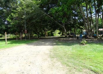 Thumbnail Land for sale in Cahuita Canton, Limon, Costa Rica