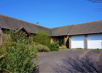 Thumbnail 3 bed detached bungalow for sale in Streetway Lane, Dorchester