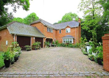 Thumbnail 5 bed detached house for sale in Park Lane, Horton, Berkshire