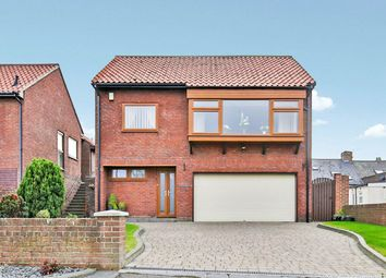 Thumbnail 5 bed detached house for sale in North Street, Newbottle, Houghton Le Spring