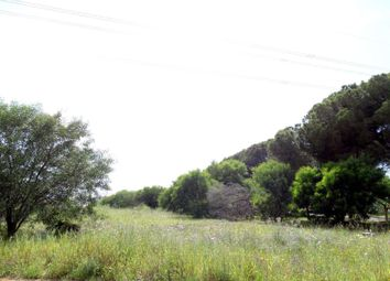 Thumbnail Land for sale in Loulé, Loulé, Portugal