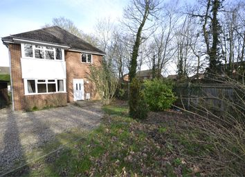 Thumbnail 4 bed detached house to rent in Queens Close, Stansted