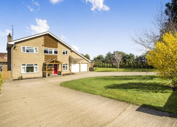 Thumbnail 5 bed detached house to rent in Bridle Lane, Downham Market