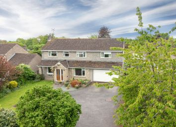 Thumbnail 4 bed detached house for sale in Stoney Lane, Curry Rivel, Langport