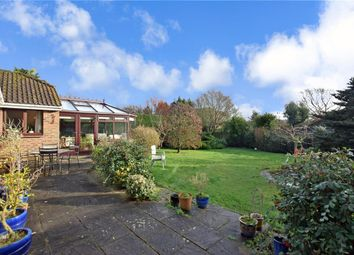 Hill Farm Lane, Codmore Hill, West Sussex RH20. 3 bed detached bungalow