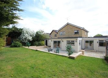 Thumbnail 4 bedroom detached house for sale in Wardley Close, Ipswich