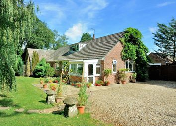 Thumbnail 4 bedroom detached bungalow for sale in The Dell, Station Road, Semley, Dorset