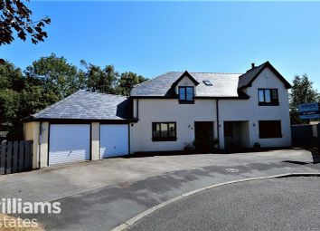 Thumbnail 4 bed detached house for sale in Cae Eithin, Lixwm, Holywell