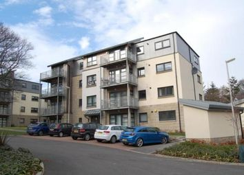 Thumbnail 2 bed flat to rent in Cooper Lane, Hilton, Aberdeen