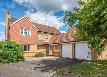 Thumbnail 4 bed detached house for sale in Deep Spinney, Biddenham, Bedford