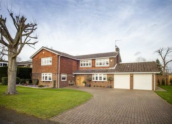 Thumbnail 5 bedroom detached house for sale in Penny Croft, Harpenden, Hertfordshire