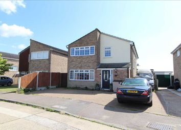 Thumbnail 5 bed detached house for sale in Birch Avenue, Great Bentley, Colchester